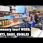 Inside a Colorado Dispensary! Silver Stem Fine Cannabis