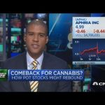 Cannabis stocks may be relighting in 2020