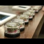 Inside MedMen, The Whole Foods Of Pot Shops