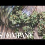 MedMen Is Making Marijuana Mainstream | Changing The Game