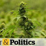 Cannabis stocks continue to tumble | Power & Politics