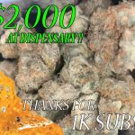 SPENDING $1000 AT THE DISPENSARY FOR 1000 SUBSCRIBERS!!!!